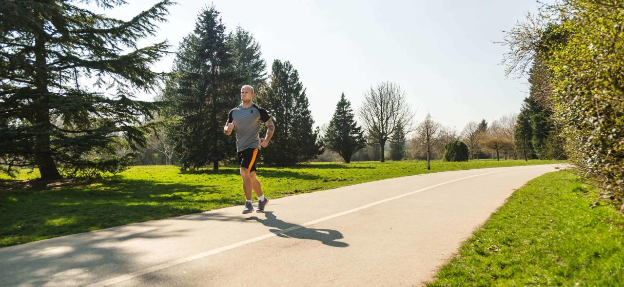 How does cardio affect muscle gains?